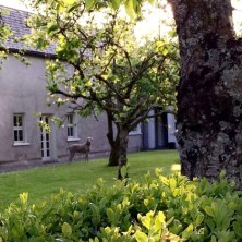 Our lush gardens