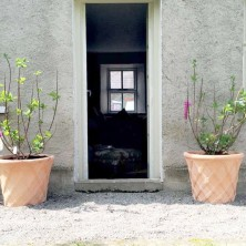 Garden entrance to lounge